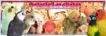 Aviario_las_chatas
