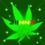 StuntR ZiinXxx