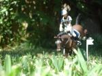 Ponylover2606