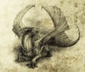 Whitezwizard