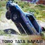 toro tatasafari