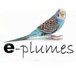 e-plumes