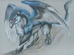 wolfgang8