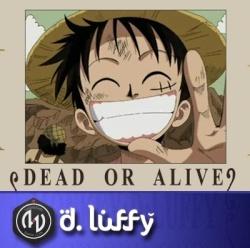 D.Luffy