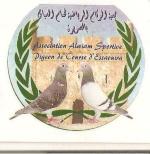elhallab yassine