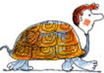 turtlered