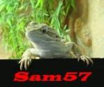 sam57