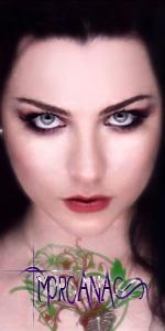 Morgana L Vollmond