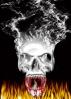 Gallery Skull_13