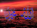 MUSLIM NICE