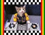 DJ-M4R10