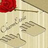 CharmEtoile
