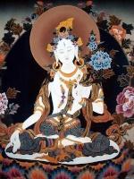 L'étude et la Pratique du Dharma 2041-69