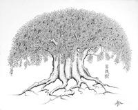 L'arbre des Refuges 413-18