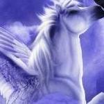 Alex Pegasus