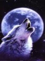 White Wolfer's Moon