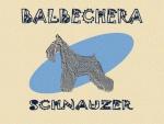 Balbechera