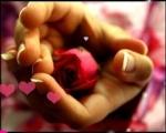 اميـ الحب ـرة