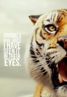 Karim $ Tiger