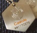 Cawole