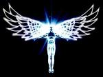 arkangel974