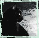 Fantôme Noir †