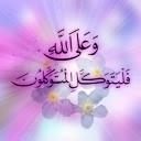 امير محمد