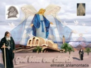 معجزة نزول زيت من صورة السيدة العذراء ببورسعيد 491962