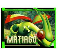 MrTiago