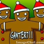 Ganter711