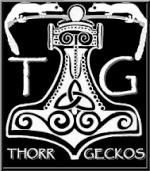 Thorrshamri2