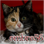 Ombre56