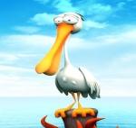 Pelican44