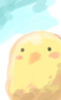 Bird-Sama