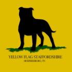 yellowflagstaffordshire