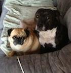 Annie and Maxi