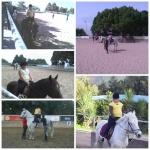 erika equitacion love