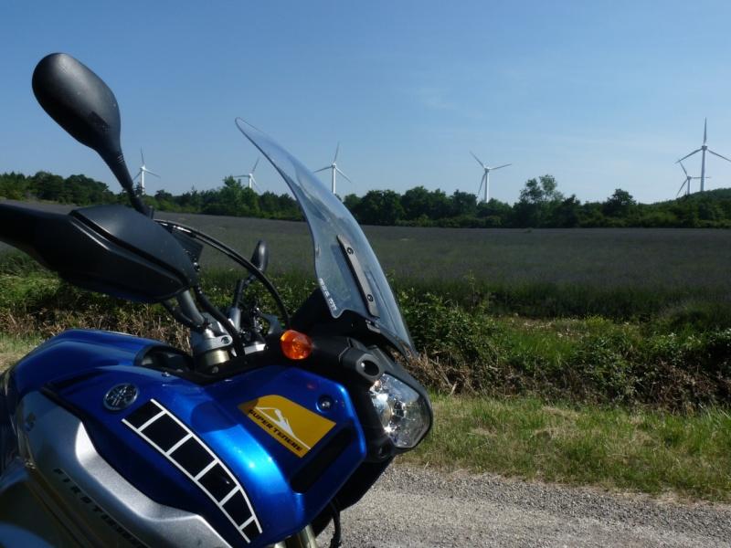 Vos plus belles photos de motos P1110911_800x600