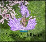 Gamma_BunTa