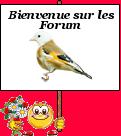 bonsoir je me présente  1812034648