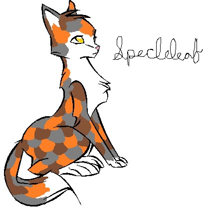 I'm looking for a mate preferably from Windclan Cat_li10
