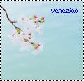 veneziaa