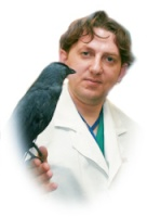 Владимир Чугуевский