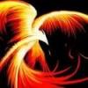 wings_of_fire