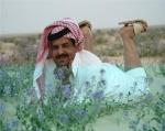 أبوصدام