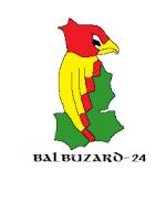 Balbuzard