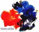 natcat34