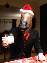 Mr.Horse