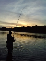 fishing-olivier100