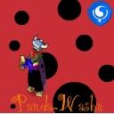 panda-washu